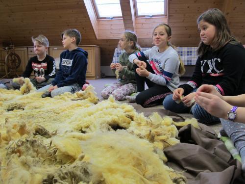 Od ovečky ke svetru